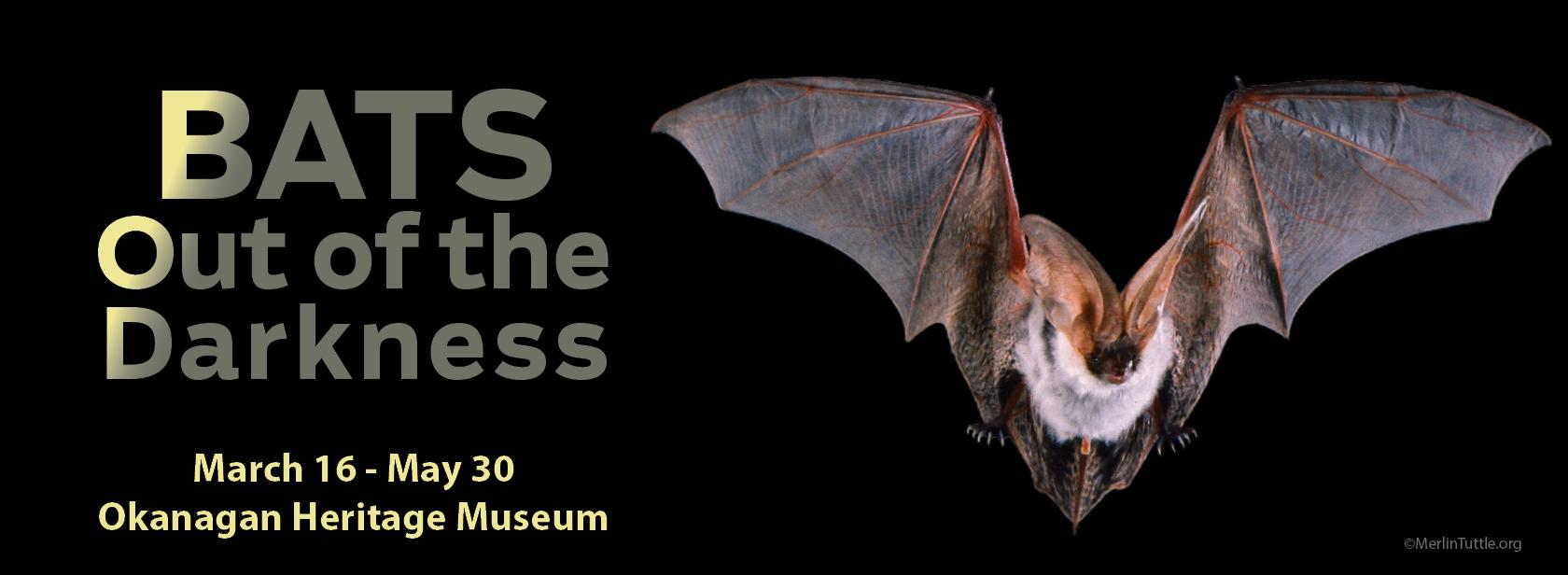 BATS web banner 2 Home