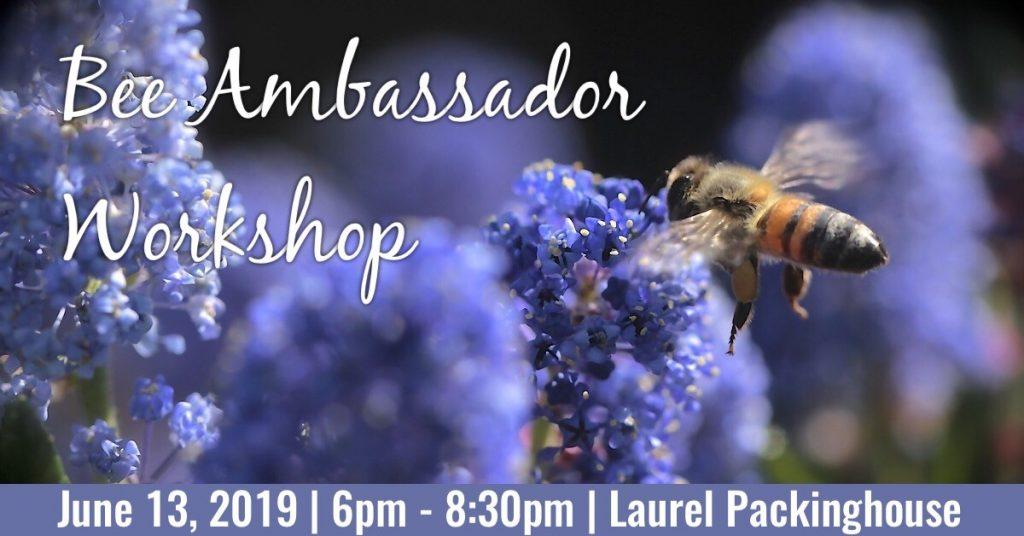 Bee 1024x536 Bee Ambassador Workshop