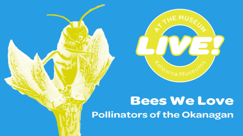 Bees We Love Facebook event 1024x576 Bees We Love