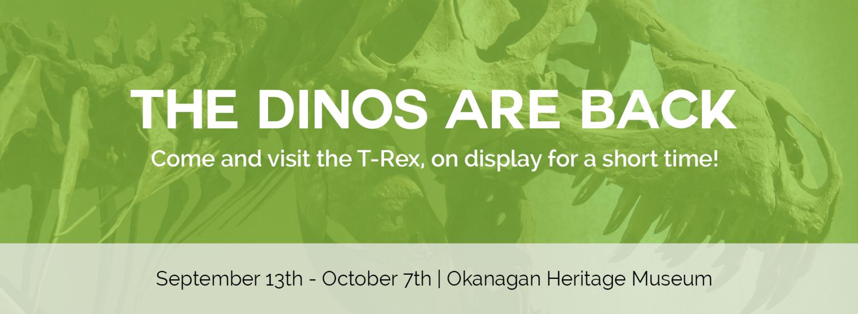 Dino exhibit kelowna museums slider 2 Home