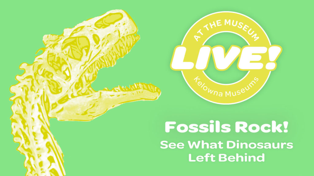 Fossils Rock Event Image 1024x576 Fossils Rock! See What Dinosaurs Left Behind