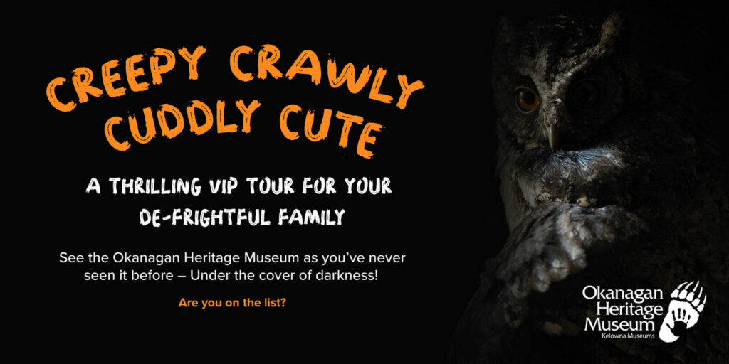 Halloween Tours Website Banner 1024x512 Creepy Crawly Cuddly Cute: A Halloween Tour