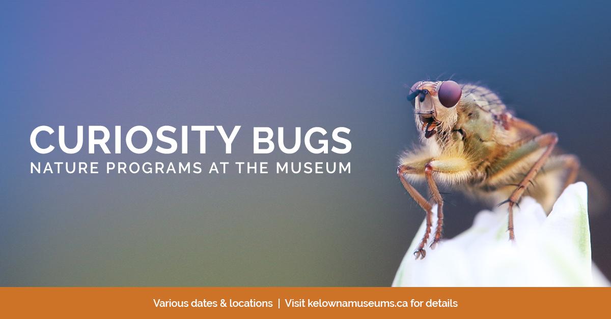 KelownaMuseums 2018 Programs CuriosityBugs 1200x628 v2 Curiosity Bugs Presents: Pollination Station