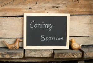 Laurel packinghouse gift shop coming soon 300x204 The Laurel Packinghouse