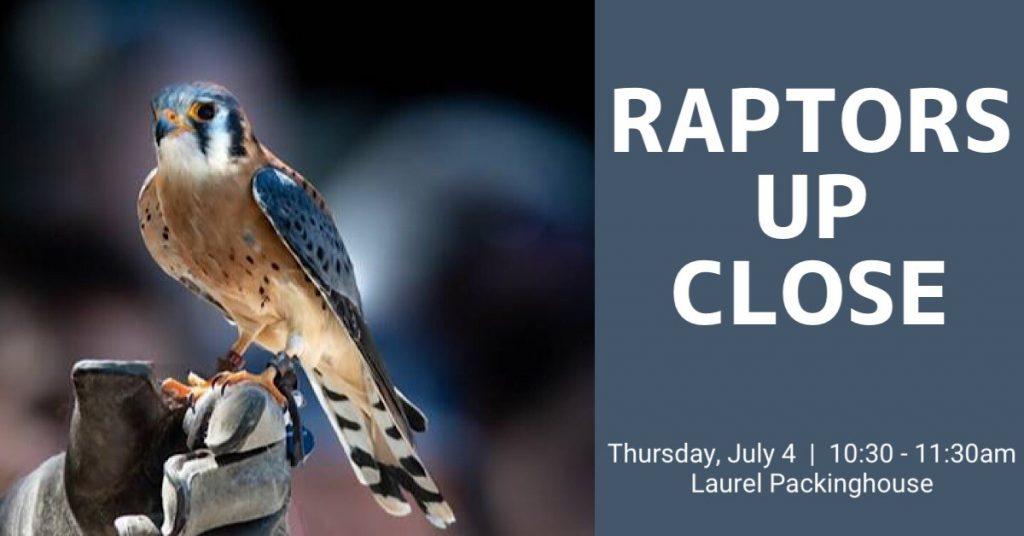 Raptors 1200x628 1024x536 Raptors Up Close