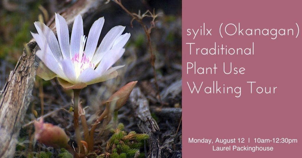 TraditionalPlant aug 1024x536 syilx (Okanagan) Traditional Plant Use Walking Tour