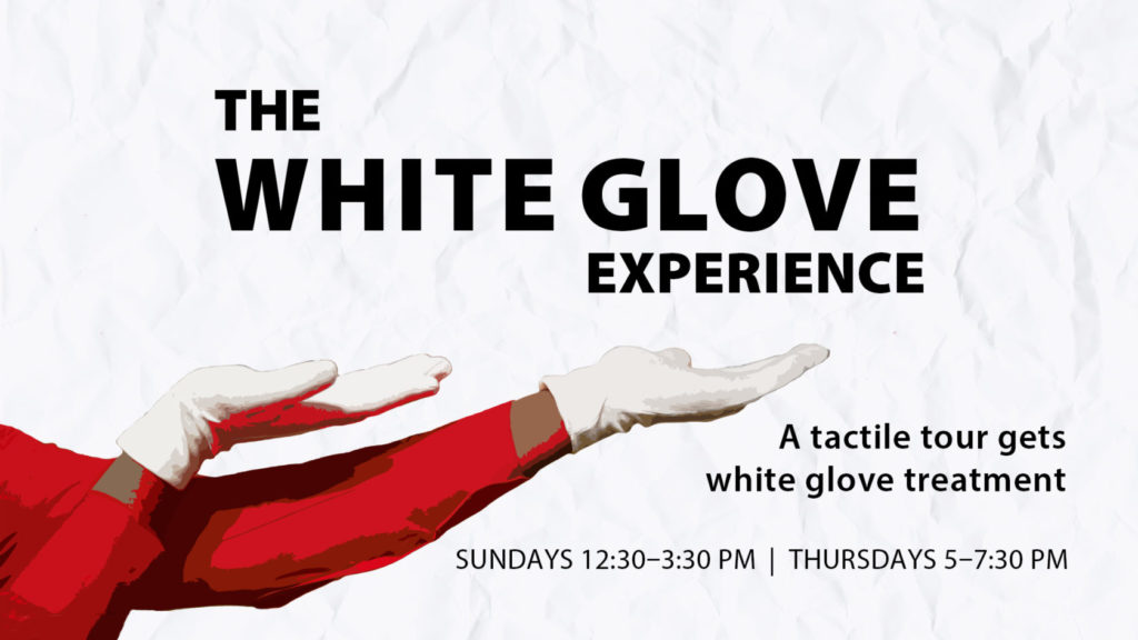 White Glove Experience Facebook Event 1024x576 The White Glove Experience: Mammal Skulls